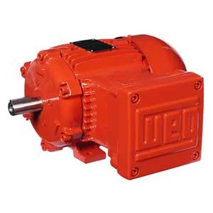 الکتروموتور ضد انفجار | Explosion proof Electric Motor